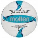 Tinklinio kamuolys Molten BV2500-FBO